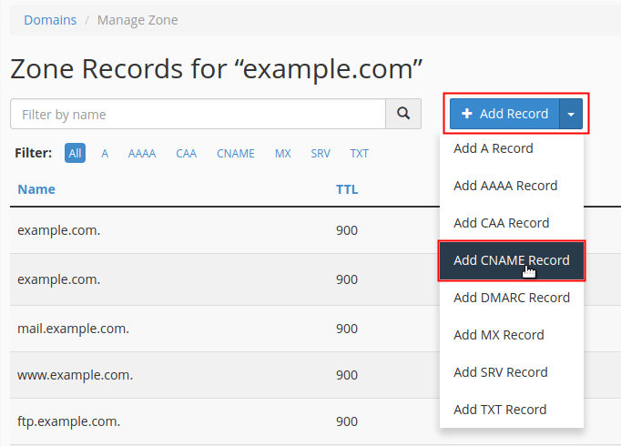 Click +Add Record drop-down menu and select record